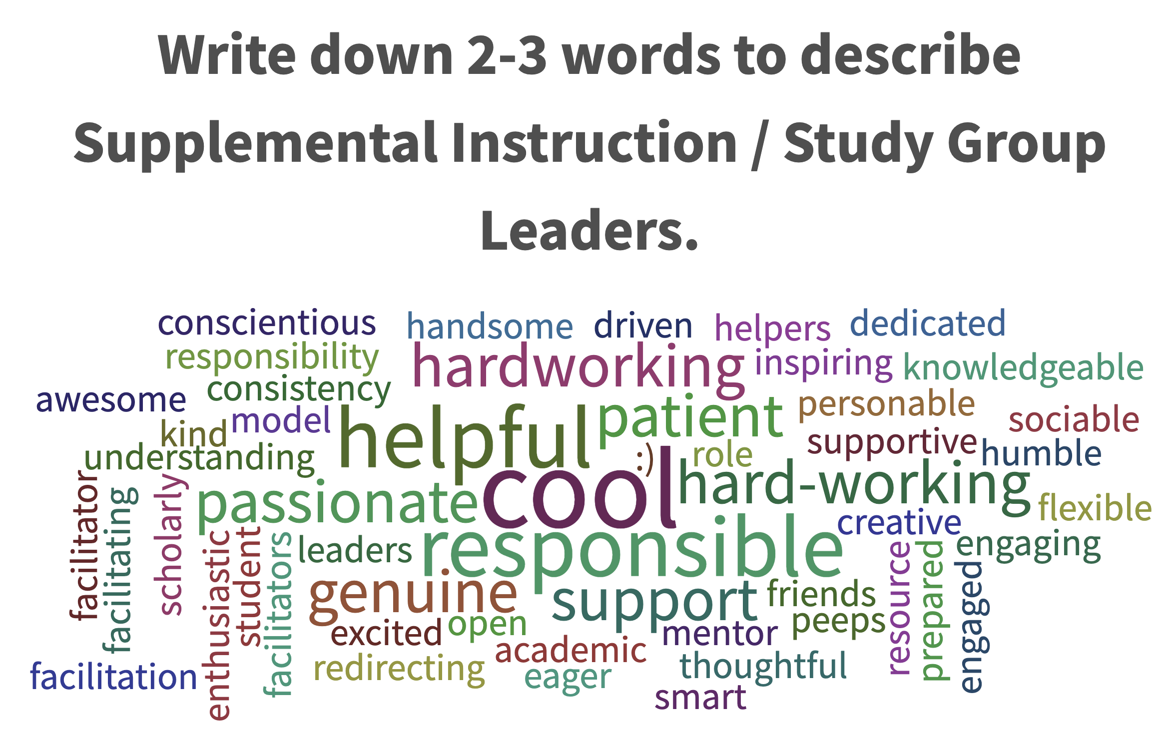 image of words used to describe supplemental instruction and study group leaders
